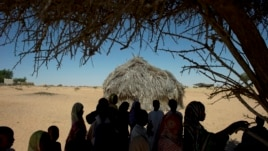 In this November 2012 photo, children gather under a sole shade tree as they take a break from class outside their schoolhouse made of reeds in the village of Louri, in the Mao region of Chad.