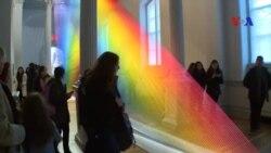 Các tác phẩm nghệ thuật lạ lùng thu hút những đám đông kỷ lục