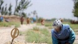آرشیو: یک مین پاک افغان در حال تمیز کردن زمین