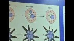 中國科學家發現可能會殺死癌症的病毒