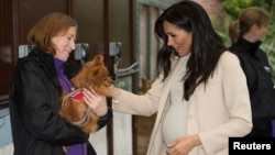 "Meghan, Duchess of Sussex meets ""Foxy"" during a visit to the animal welfare charity Mayhew in London, Britain, Jan. 16, 2019."