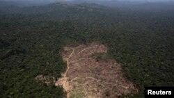 Emisi gas rumah kaca di Brazil meningkat akibat perubahan penggunaan lahan yang disertai naiknya laju penebangan pohon di kawasan Amazon (foto: dok).