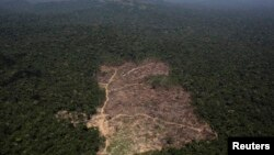 FILE - An aerial view of a tract of Amazon jungle cleared by loggers and farmers near Novo Progresso, Para state, Brazil.