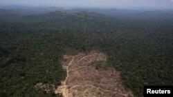 Vista aérea de una parte de la selva amazónica recientemente talada, cerca de la ciudad de Novo Progresso, estado Para, Brasil,