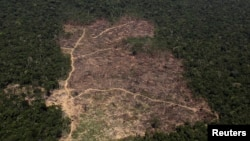 FILE - An aerial view of a tract of Amazon jungle cleared by loggers and farmers near Novo Progresso, Para state, Brazil, Sept. 22, 2013.