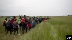Migrants and refugees who were camped in Idomeni walk through fields in their attempt to cross the Greek-Macedonian border near the village of Evzoni, May 12, 2016.