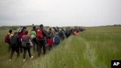 Para migran dan pengungsi di Idomeni berjalan melewati area persawahan dalam upaya menyeberangi perbatasan Yunani-Macedonia dekat desa Evzoni, 12 Mei 2016. (Foto: dok).