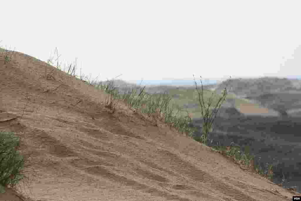 По геологической классификации и климатическим условиями Алёшковские пески относят к северным полупустыням. При этом летом песок здесь нагревается до 75 градусов по Цельсию и на нем можно приготовить яичницу