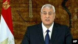 Tổng thống lâm thời Adly Mansour phát biểu trên truyền hình về kế hoạch chuyển tiếp chính trị, ngày 26 tháng 1, 2014.