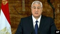 埃及临时总统曼苏尔1月26日在开罗总统府发表讲话