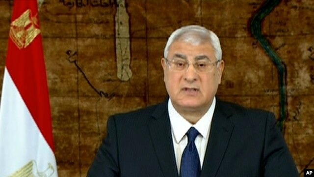 In this image made from video broadcast on Egyptian State Television, Egypt's interim President Adly Mansour speaks at the presidential palace in Cairo, Egypt, Sunday, Jan. 26, 2014.