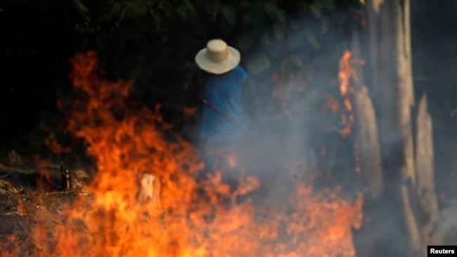 El Amazonas arde y voces del mundo se levantan para salvar el pulmón del planeta