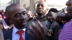 Zimbabwe Opposition Leader Chamisa Declares Electoral Victory Ahead of Official Results