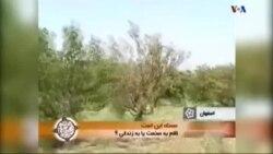 جامعه مدنی، ۱۴ ژوئن: محیط زیست در ایران