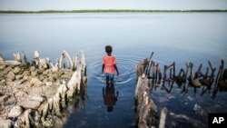 FILE - A young girl wades in the water outside of a home partially destroyed by rising sea levels in Diamniadio Island, Saloum Delta in Senegal, Oct. 18, 2015.