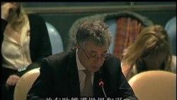 2013-04-03 美國之音視頻新聞: 聯大通過武器貿易條約