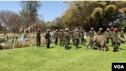 Workers at the Zimbabwe wildlife rescue center Wild is Life are seen outside Harare, Sept. 23, 2020, dancing in the Jerusalema Dance Challenge, a South African internet craze that has gripped the continent (Columbus Mavhunga/VOA)