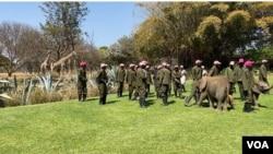 Izisebenzi ze Zimbabwe wildlife rescue center zigida iJerusalema Dance Challenge, (Columbus Mavhunga/VOA)