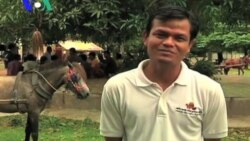 A Horse Clinic Starts Free of Charge Service in Rural Cambodia (Cambodia news in KHmer)