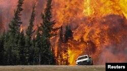 جنگل میں لگی آگ سے شعلے اور دھواں بلند ہو رہے ہیں۔ 7 مئی