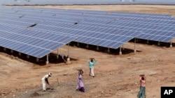 Các tấm thu năng lượng mặt trời tại công viên năng lượng mặt trời, ở Charanka, Ấn Độ