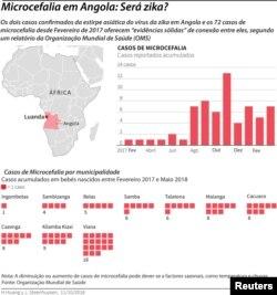 Gráfico Zika e Microcefalia em Angola 2018