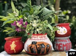 This photo taken and received courtesy of an anonymous source via Facebook on April 13, 2021 shows Thingyan festival flowers and leaves displayed in pots decorated with designs in support of demonstrations by protesters against the military coup in Yangon