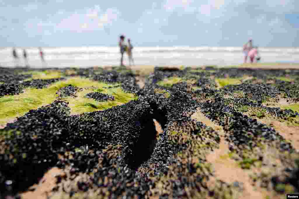 An oil spill is seen on 'Sitio do Conde' beach in Conde, Bahia state, Brazil, Oct. 12, 2019.