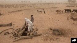 Warga Chad menggunakan keledai untuk menarik air minum dari sebuah sumur di sebuah desa di padang pasir (foto: ilustrasi).