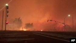 In this image from video released by Chase Bonefant @ChaseBonenfant, shows the Lilac fire burning in Bonsall, Calif. A brush fire driven by gusty winds exploded rapidly Thursday north of San Diego, destroying dozens of trailer homes in a retirement community and killing race horses at an elite training facility.