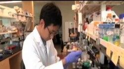 蓋茨基金會捐巨款抗擊伊波拉
