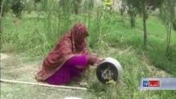 زنان در پکتیکا حبس شان را خارج از زندان سپری میکنند