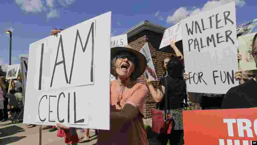 Des manifestants dréclament justice pour Cecil , 29 juin 2015