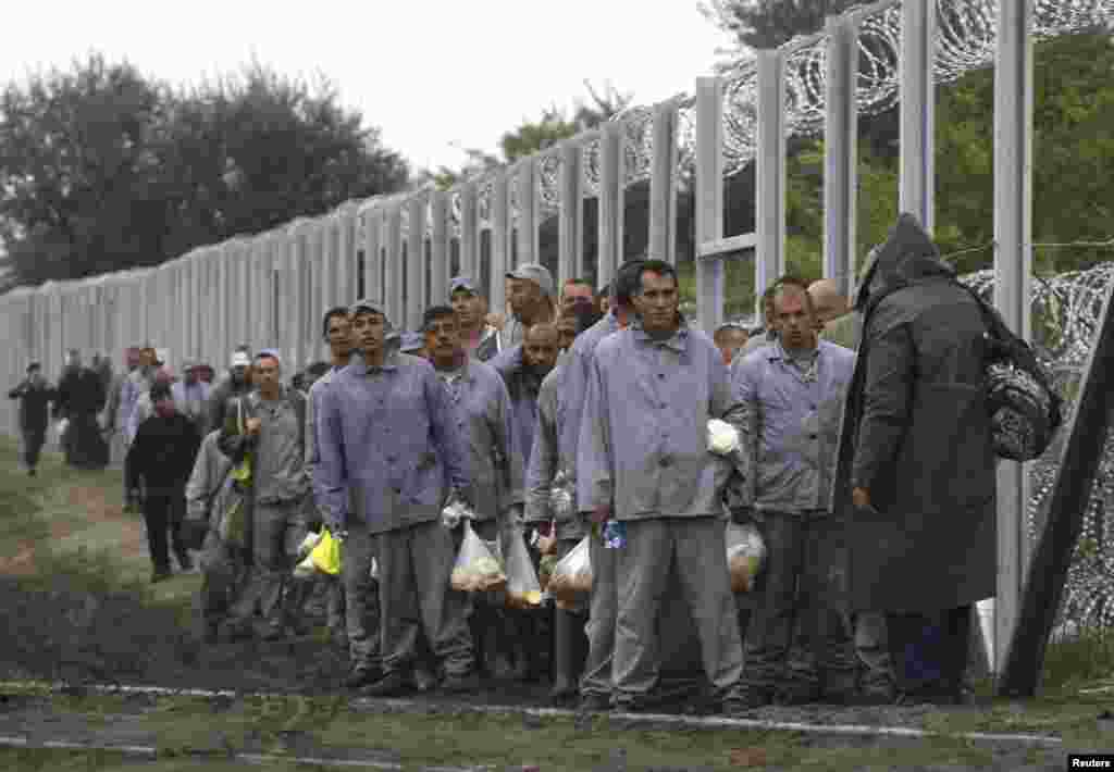 A gang of prison inmates worked Friday on the 3.5 meter high barrier along the full length of the Hungarian-Serbian border.