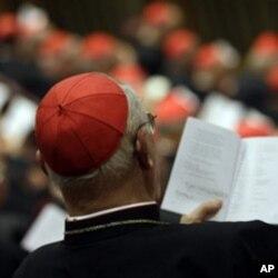 出席會議的樞機主教聆聽教宗演說
