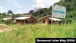 Les cases écologiques pour touristes à Tayap, Cameroun, 4 novembre 2017. (VOA/Emmanuel Jules Ntap)
