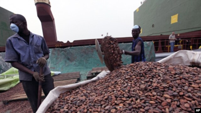 Workers gather bags of cocoa at the port of Abidjan. EU-registered vessels have been barred from all new financial dealings with Ivory Coast's two main cocoa-exporting ports, 17 Jan 2011