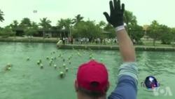 美古关系正常化 美运动员赴哈瓦那参赛