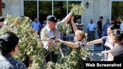 Nərimanov rayonunda ağacların kəsilməsinə sakinlər etiraz edir