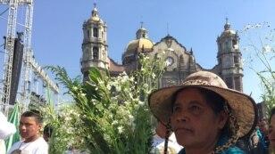 Alrededor de 20 mil boletos se han distribuido entre los fieles de las parroquias católicas para que puedan ingresar al Zócalo. Foto: Celia Mendoza, VOA.