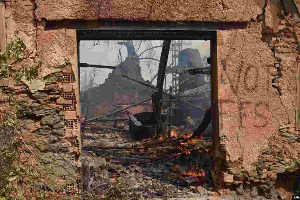 알제리 카빌리 지역에서 인구가 가장 많은 도시로 꼽히는 티지우주에 산불이 펴져 최소 7명이 사망했다.