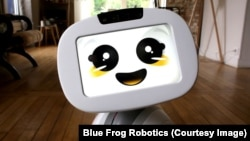 Blue Frog Robotic