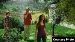 California es el estado productor número uno de cítricos frescos de la nación.