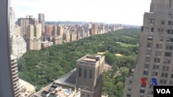 位於紐約中央公園附近的公寓樓,成為外國人在美國投資房地產的目標。(視頻截圖)