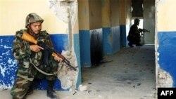 NATO, Yerel Bir Taleban Liderini Yakaladı