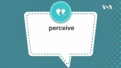 学个词--perceive