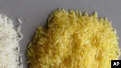 It's makers argue that vitamin A-enriched rice could prevent blindness in children.