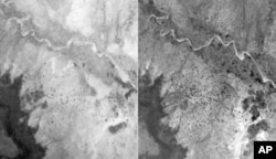 Aerial photography shows the dramatic increase in trees (in black) on land near Galma, Niger, from 1975 (left) to 2002 (right).