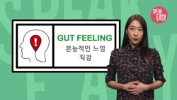 [Speak Easy] 직감 'gut feeling'