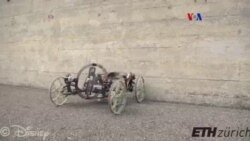 Robot que trepa paredes